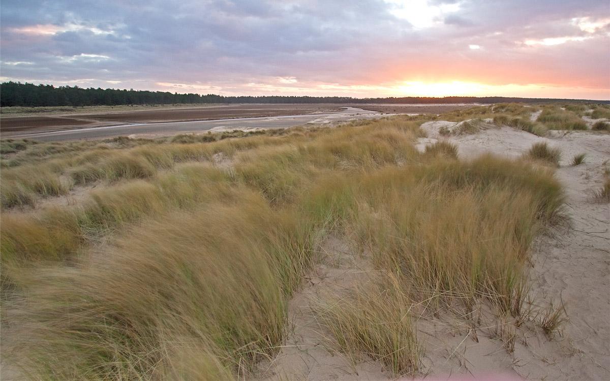 Winter sunset on sand dunes, Norfolk, UK