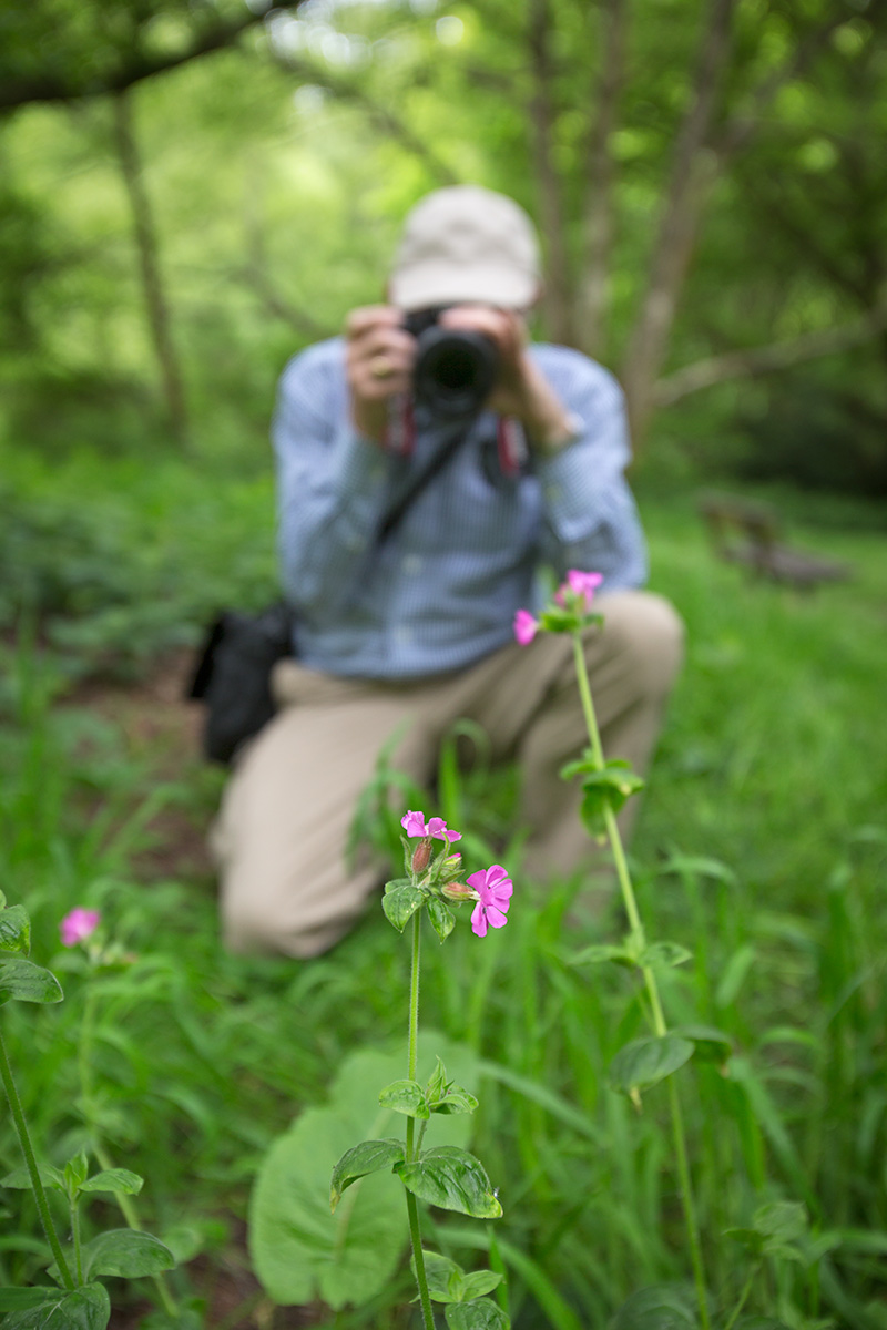photographer shooting spring flowers