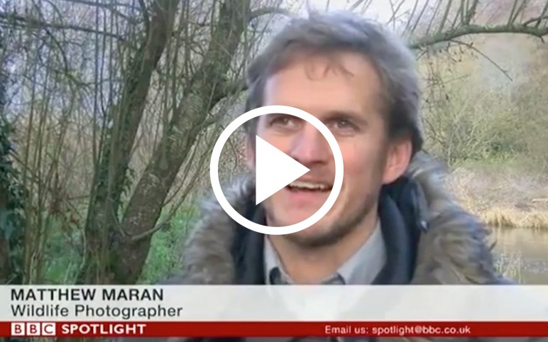 BBC News Feature – Space for Nature