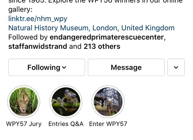 WPY Instagram Takeover
